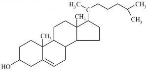 cholestérol structure moléculaire