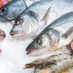 8 bienfaits du poisson gras +  liste des meilleures espèces