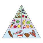 9 Délicieuses Recettes Paléo  – Petit-Déjeuner, Déjeuner Et Dîner